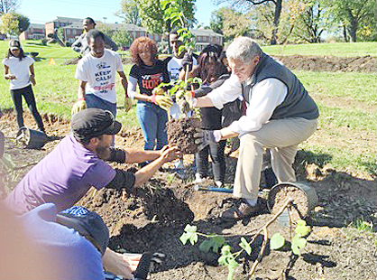 Ezekiel Nance from New Leaf Tree Care leads planting operations assisted by volunteers.